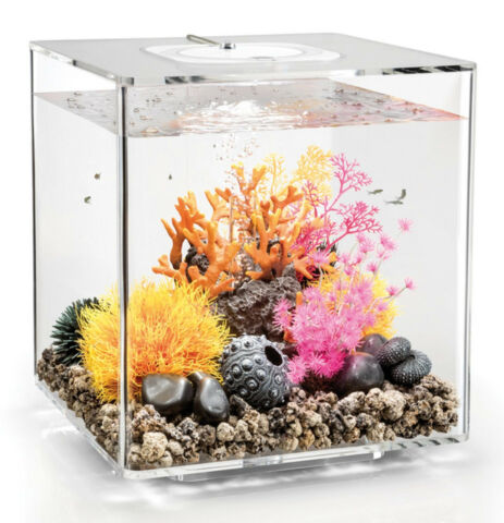 BIORB NANO AQUARIUM KOMPLETT SET CUBE 30 MCR TRANSPARENT 32 X 32 X 34 5 CM