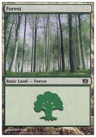 MTG 1X FOREST WALD 8TH EDITION NR 350 FOIL NM