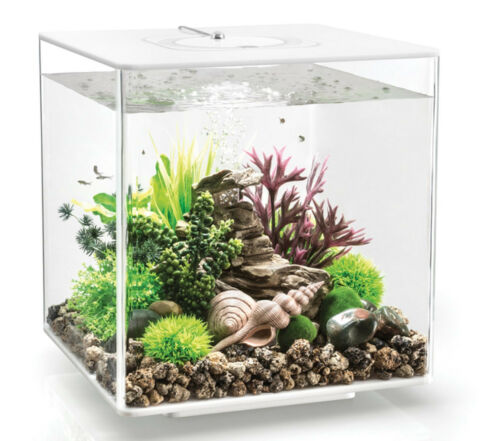 BIORB NANO AQUARIUM KOMPLETT SET CUBE 30 LED TRANSPARENT 32 X 32 X 34 5 CM