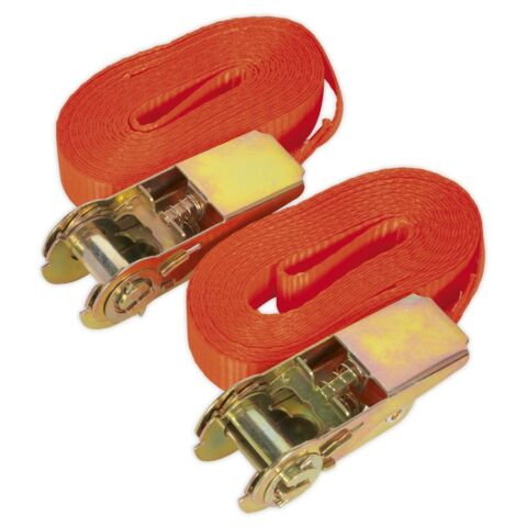 SELF SECURING RATCHET TIE DOWN 25MM X 4 5MTR 800KG LOAD TEST PAIR TD08045E