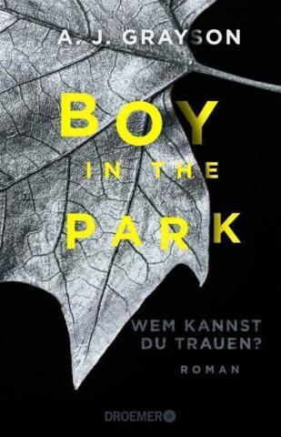 BOY IN THE PARK VON A J GRAYSON 2016 PAPERBACK UNGELESEN