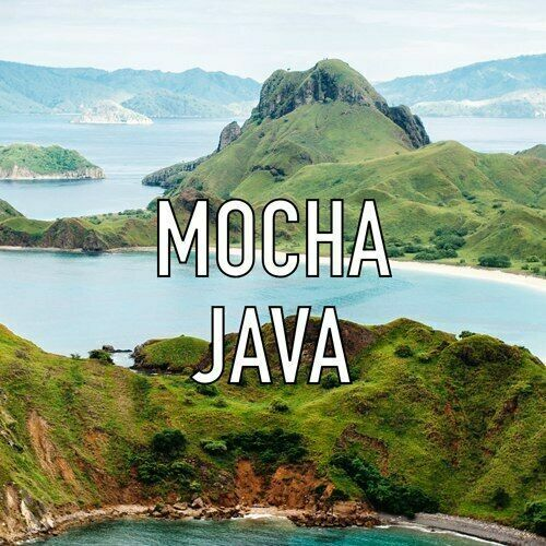 Mocha Java Gourmet Grade Whole Coffee Beans Fresh Roasted Daily 2 1 Pound Bags
