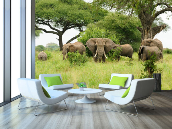 3D Trees And Elephants 3822 Wallpaper Decal Dercor Home Kids Nursery Mural Home