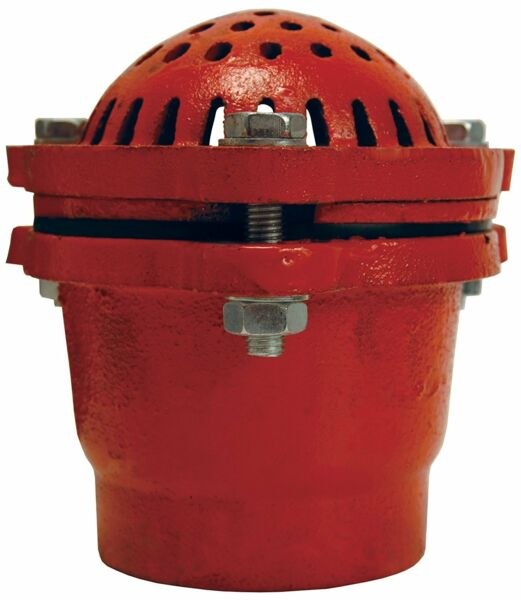 DIXON DFVS80 8 inch Cast Iron Threaded Foot Valve