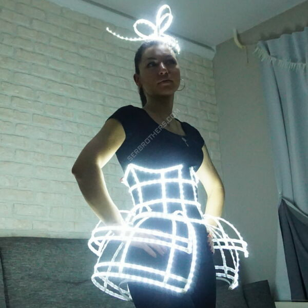 LED ligth up cage dress batterfly and barrette. LED show costumes and accessorie $440.00