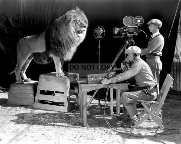 MGM FILMING quot;LEO THE LIONquot; FOR OFFICIAL LOGO CIRCA 1928 8X10 PHOTO RT178 $7.98