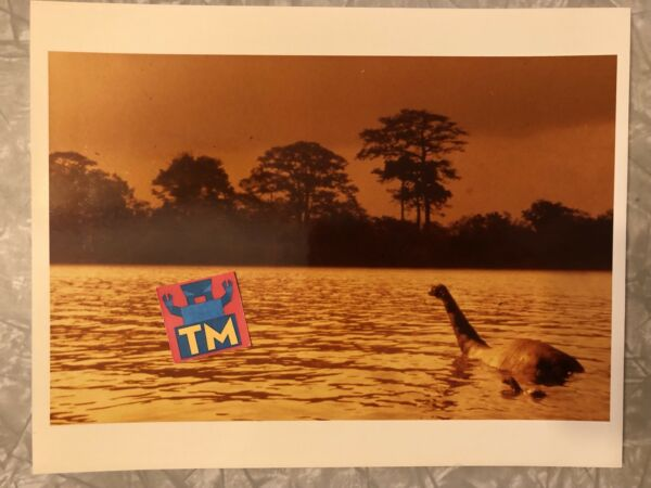 Baby Secret Of The Lost Legend - 8x10 Photo - Buy 3 Get 1 FREE!