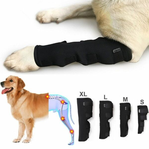 Knee Brace For Dogs Hock Protector ACL Therapeutic Dog Rear Leg 4 Strap SMLXL $21.27