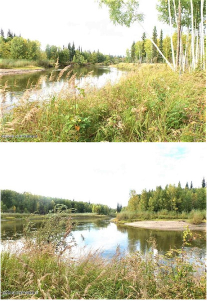 AMAZING WOODED 22.43 ACRES ALASKA RARE 1835 FT RIVER FRONT & POND. CASH SALE