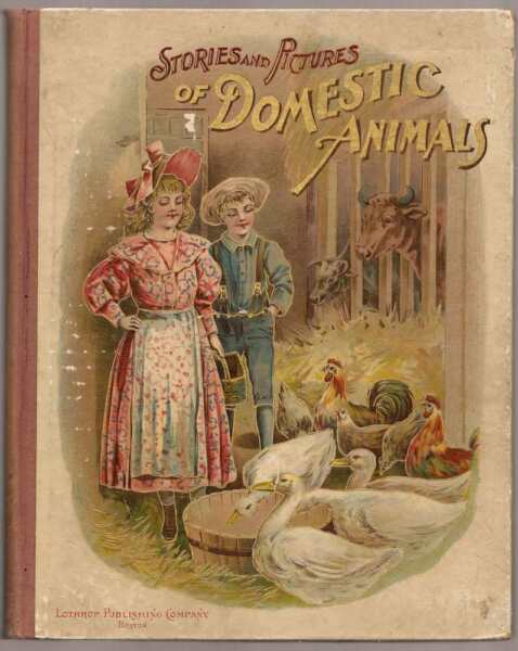 Stories and Pictures of Domestic Animals Anna F. Burnham 1879 $145.00