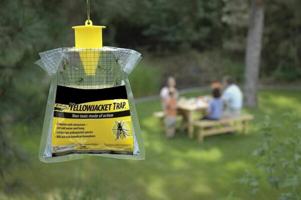 Outdoor Disposable Fly Wasp Honey Bees Trap Hornets Insects Yellow Jacket New