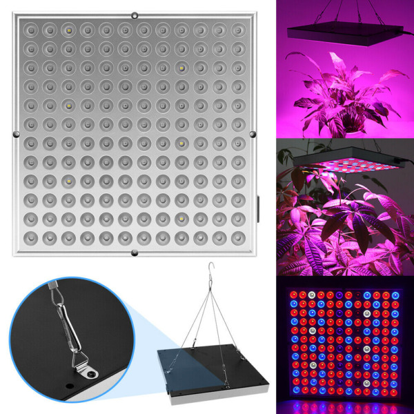 1000W Full Spectrum LED Grow Light Plant For Indoor Tent Greenhouse Hydroponic $23.99