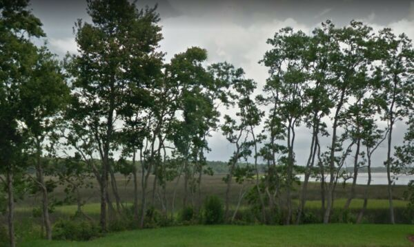 Waterfront Property! 10 Acres in Jacksonville Florida: Immediate Tax Deed Rights