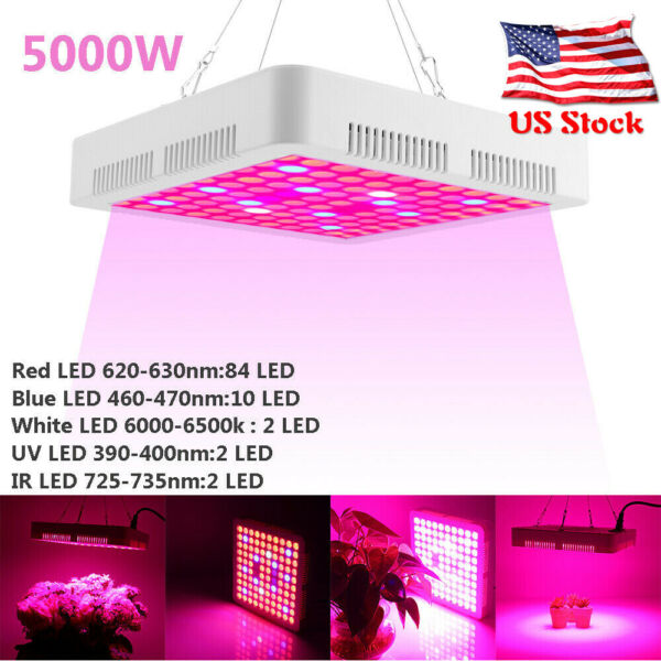 5000W LED Grow Lights Full Spectrum For All Indoor Plants Veg Flower Bloom IP65