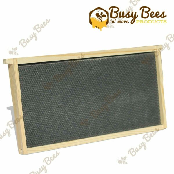 Langstroth Bee Hive 10 Frame Deep Frames and Foundations $39.00