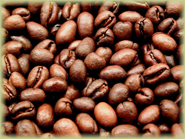 Brazilian JAZBLU Gourmet Peaberry Coffee Beans Fresh Roasted Daily 2 10 Pounds