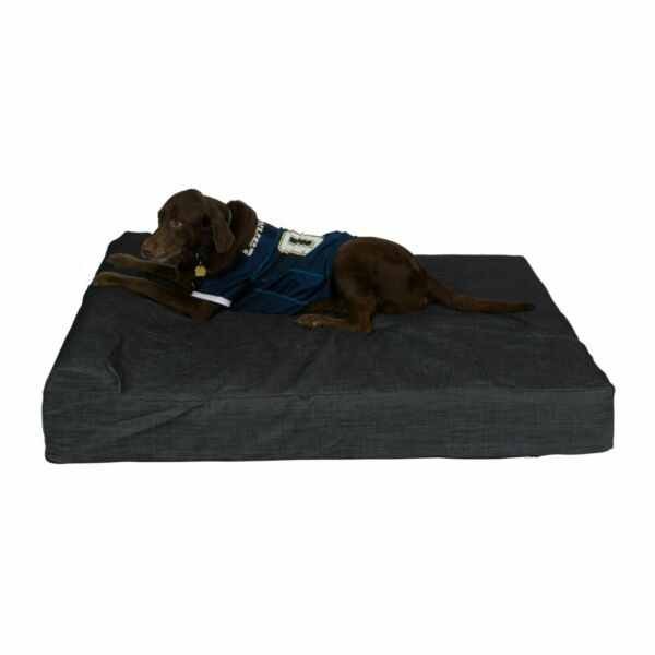 Pet Support Systems Lucky Dog Orthopedic 7quot; Memory Foam Dog Bed with Bolster $189.95