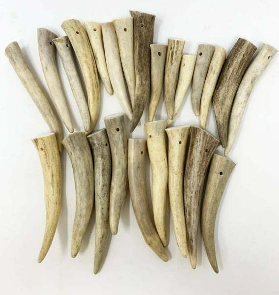 12 Pack DRILLED HOLE Deer Antler Pendants Tines Tips Size: 2 quot; to 3quot; $24.99