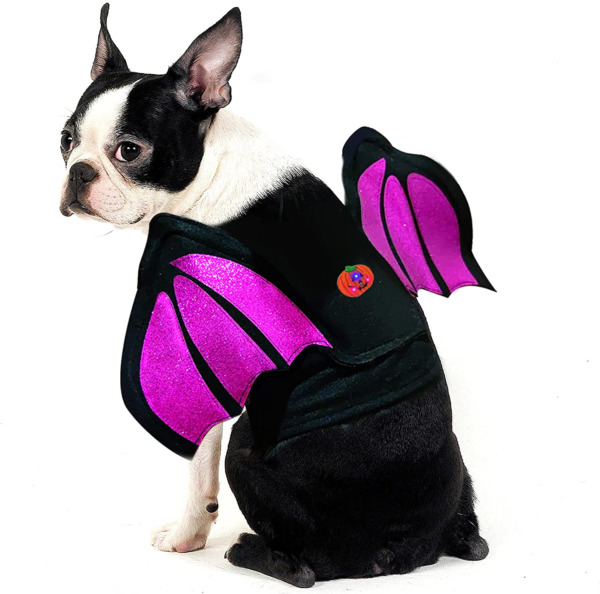 azuza Dog Costumes Halloween with Led Light Glitter Bat Wings for Dogs Cosplay D $11.99