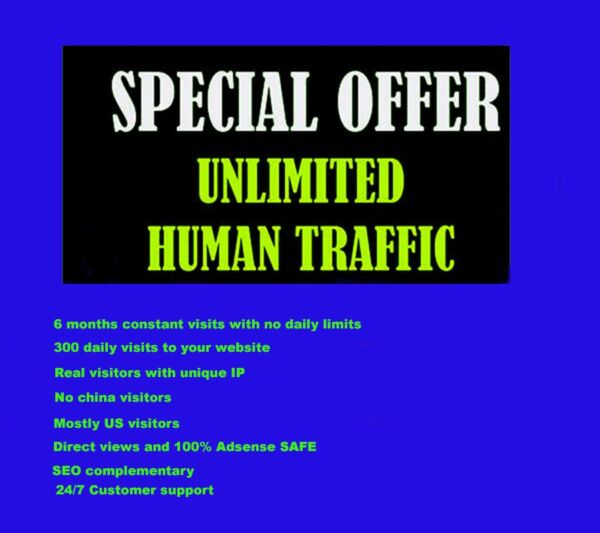 Genuine Unlimited Daily 300 Website Traffic for 6 months