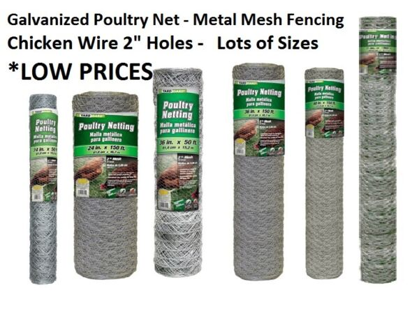 Galvanized Poultry Net - Metal Mesh Fencing  Chicken Wire 2