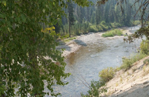 20 Acre Gold Mining Claim (Placer)