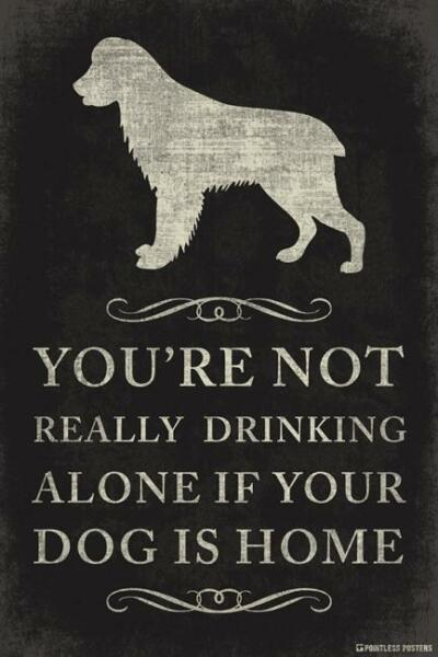 NOT REALLY DRINKING ALONE DOG HOME POSTER 12x18 FUNNY WITTY PP050 $9.50