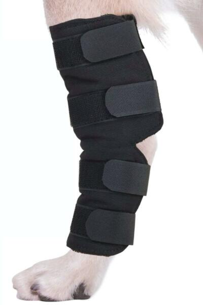 Therapeutic Dog Rear Leg Strap Knee Brace For Dogs Hock Protector ACL Large US $54.68