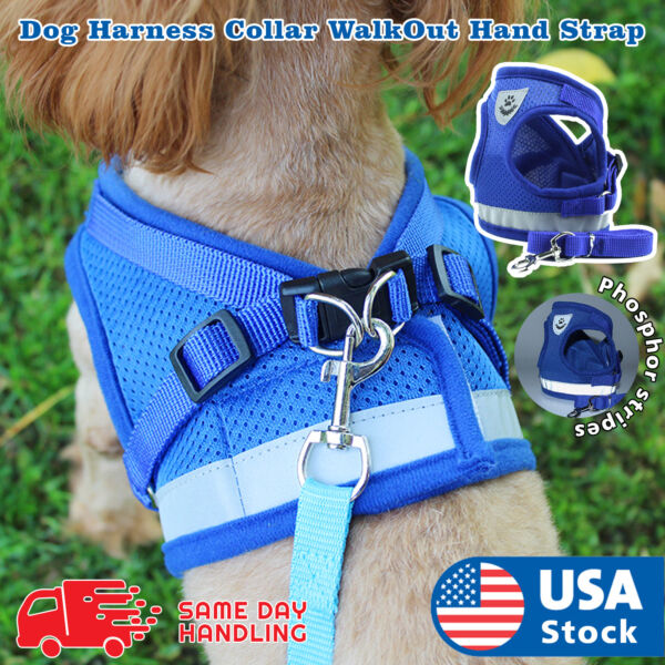 Small Dog Breathable Mesh harness Vest Collar soft chest strap XXS L Leash set $8.99