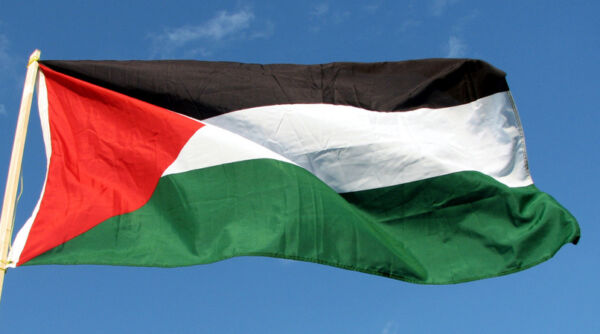 NEW 3x5 ft PALESTINE PALESTINIAN FLAG better quality USA seller $9.55