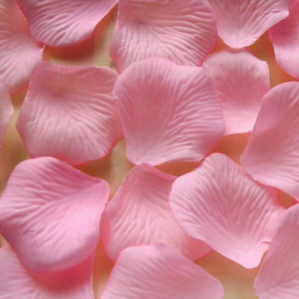 150 Pink Flower Rose Petals We Support Cancer Patients party Decorations