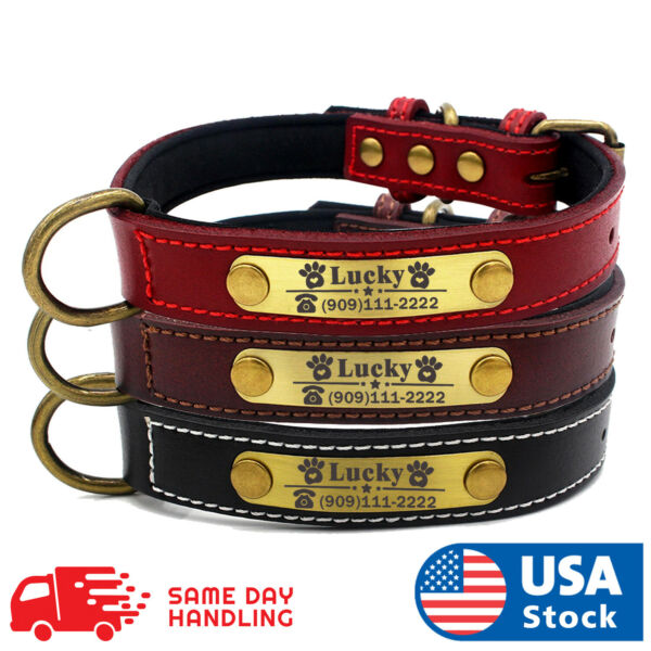 Custom Dog collar leather personalized Brass Name Plate small medium large dog $11.98