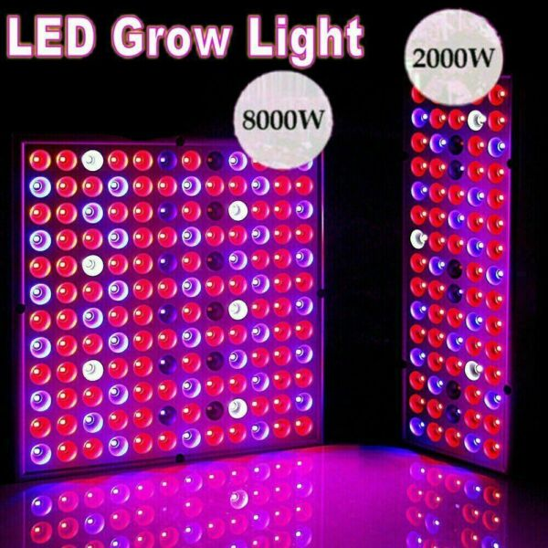8000W LED Grow Light Hydroponic Full Spectrum Indoor Plant Flower Growing Bloom $28.99