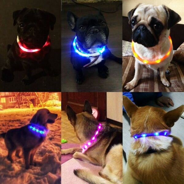 Pet Dogs Collar Light up Collar USB Rechargeable LED for Small Medium Large Dogs $8.99