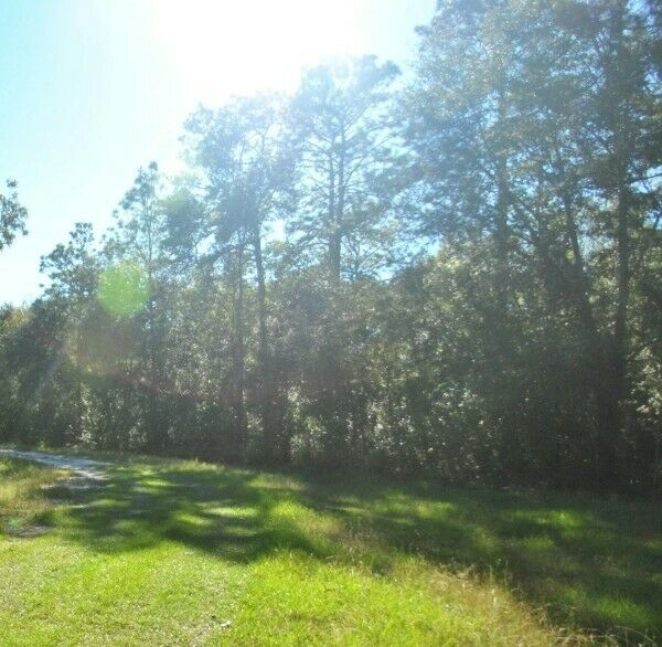 HUGE 11 Acre Property Just 7 Miles to the Beach! Near Jacksonville Beach Florida