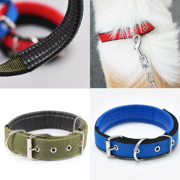Neck Strap Nylon Dog Collars Pet Collars for Small Large Dogs Cat Pet Supplies C $7.41