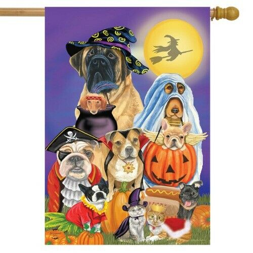 #F163 CUTE HALLOWEEN DOGS HOUSE LARGE HOUSE FLAG 28X40 BANNER $14.99