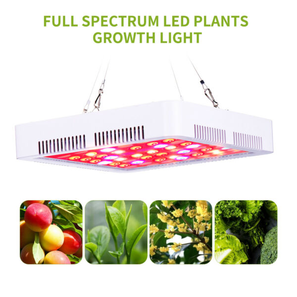 2000W LED Grow Lights Full Spectrum Indoor Plant Hydroponic Flower Growing Bloom $25.99