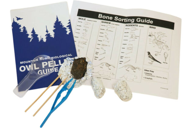 Owl Pellet Kit Includes 3 Pellets Tweezers Probe Magnifying Glass and S... $29.99