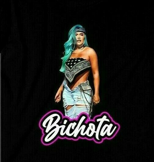 La Bichota Karol G Tee Unisex T Shirt Just In Time For The Concert $17.99