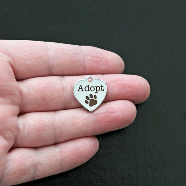 Adopt Charm Polished Stainless Steel Quantity Options BFS013