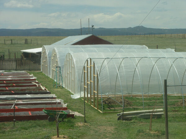 NEW 2- 20 X 96 fTGREENHOUSE KITSCommercial !10ft Ceiling! FREE SHIPPING T-T