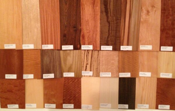 20 6quot; x 12quot; Wood Veneer Pieces Variety sample LABELED Identified name label