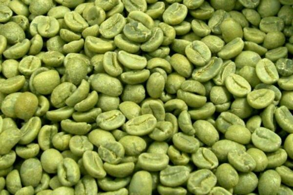 Kona Hawaiian Coffee Beans 100% Authentic Prime Green Coffee Beans -  10 Pounds