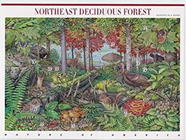 # 3899 US Postage Stamps Sheet NORTHEAST DECIDUOUS FOREST