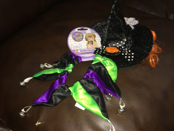 Halloween Pet Dog Costumes Jester Collar amp; Witch Hat Pets Size S M Rubie#x27;s $12.99