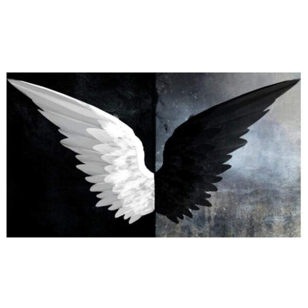 DIY 5D Diamond Painting Black White Angel Wings Embroidery Canvas Pictures Decor