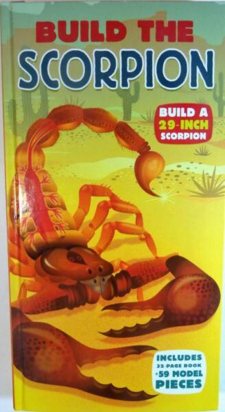 Scorpion 29quot; Build Own Model amp; Book 59 Pieces Fun While Learning Spider