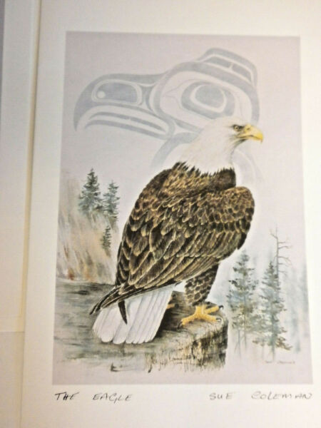 Sue Coleman 3 Art Print Greeting Cards Grizzly Bald Eagle Seal Pup