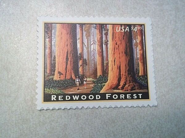 US Scott # 4378 Priority Mail $4.95 Stamp MNH Redwood Forest